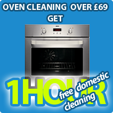 Oven clean over 69.00 +1 hr of domestic clean for free